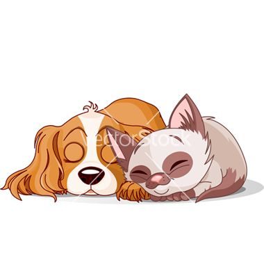 Sleeping Puppy And Kitten Vector On Vectorstock Cat And Dog Drawing Cartoon Dog Cat Clipart