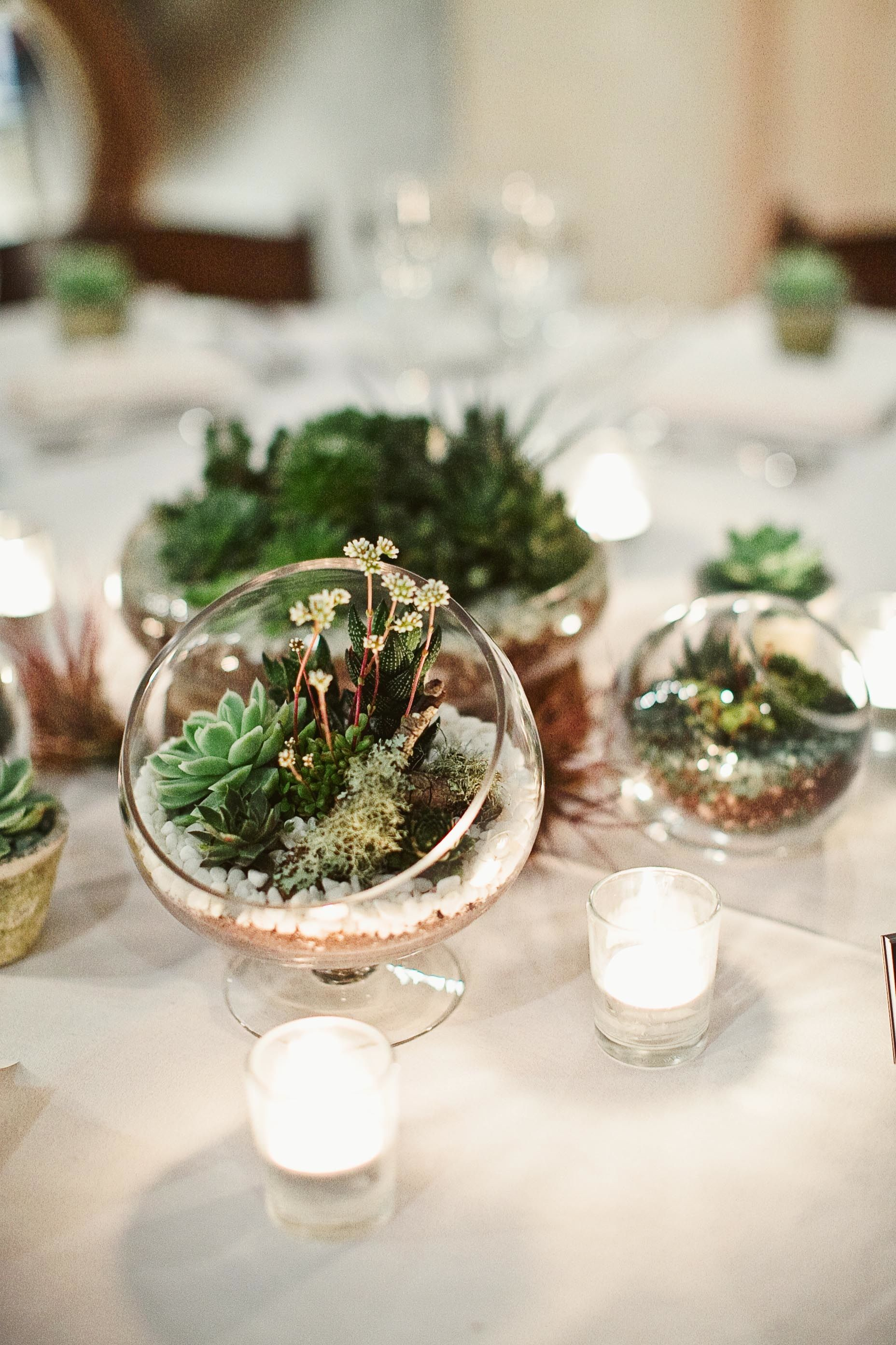 Mobile Landscapes Succulent wedding centerpieces