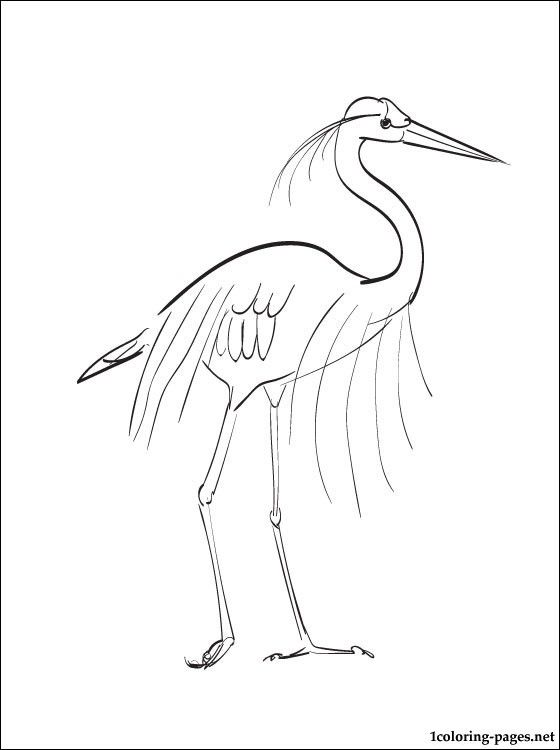 Coloring Page Great Blue Heron Blue Heron Heron Coloring Pages