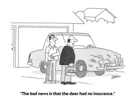 Auto Insurance Cartoon Insurance Humor Life Insurance Policy Car Insurance