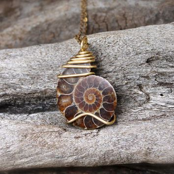 Ammonite necklace shell fossil jewelry fossilzed ammonite ammonite necklace shell fossil jewelry fossilzed ammonite jewelry seashell aloadofball Images
