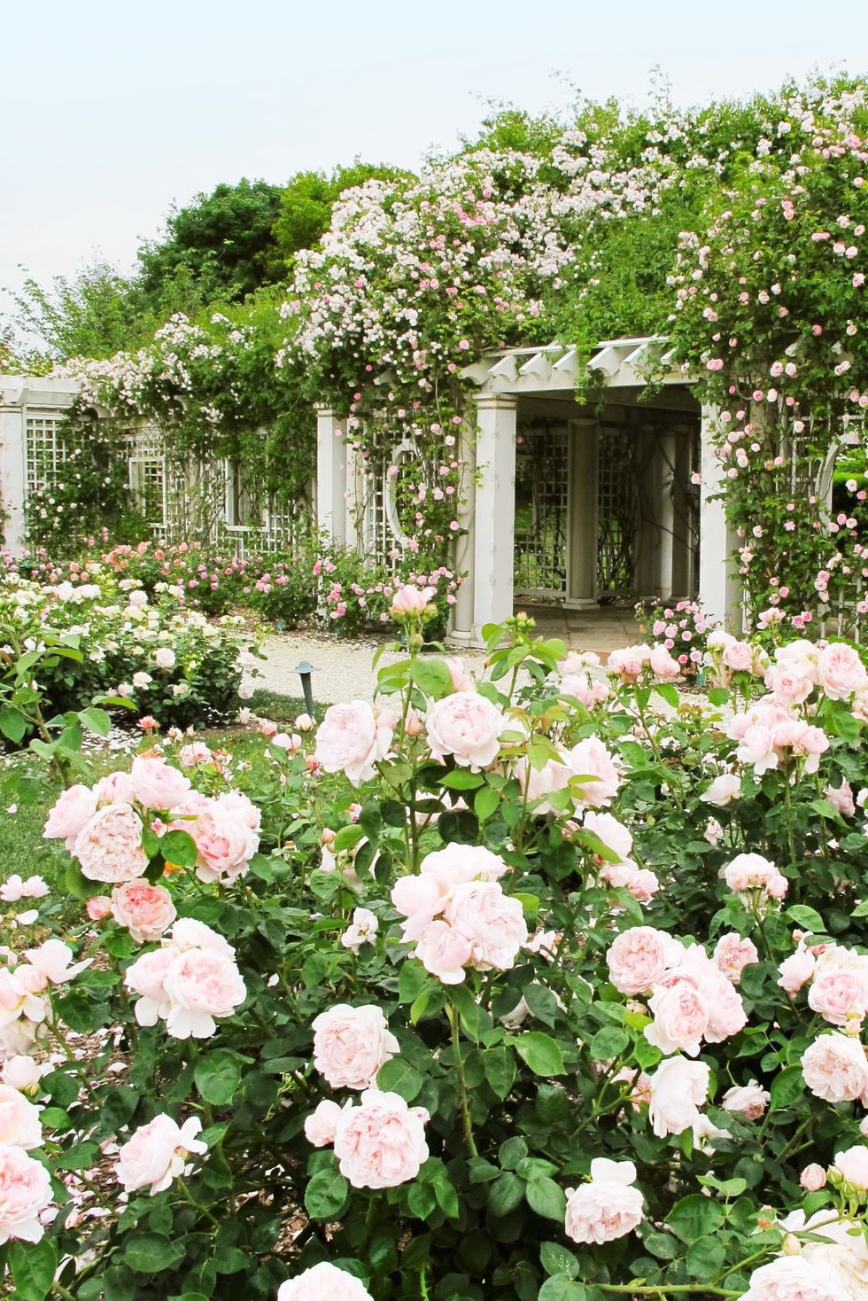15 Pergola Ideas That Ll Turn Any Outdoor Space Into A Majestic Escape In 2021 Rose Garden Landscape Rose Garden Design Garden Landscape Design