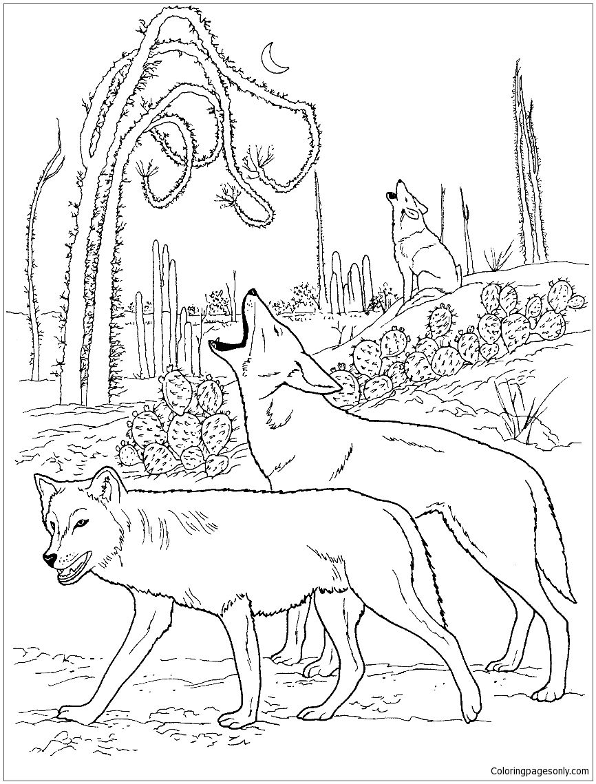 Coyotes Howling In Desert Coloring Page Wolf Colors Animal Coloring Pages Desert Animals Coloring