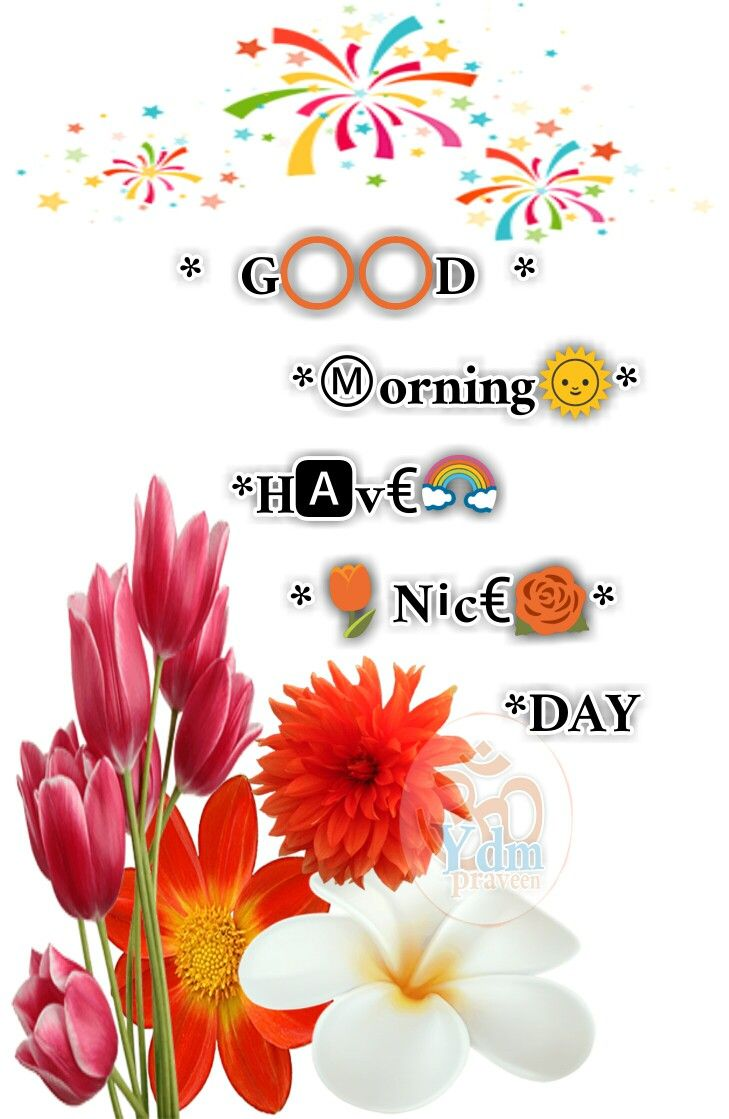 Good Morning Greetings Morning Greetings Quotes Pinterest