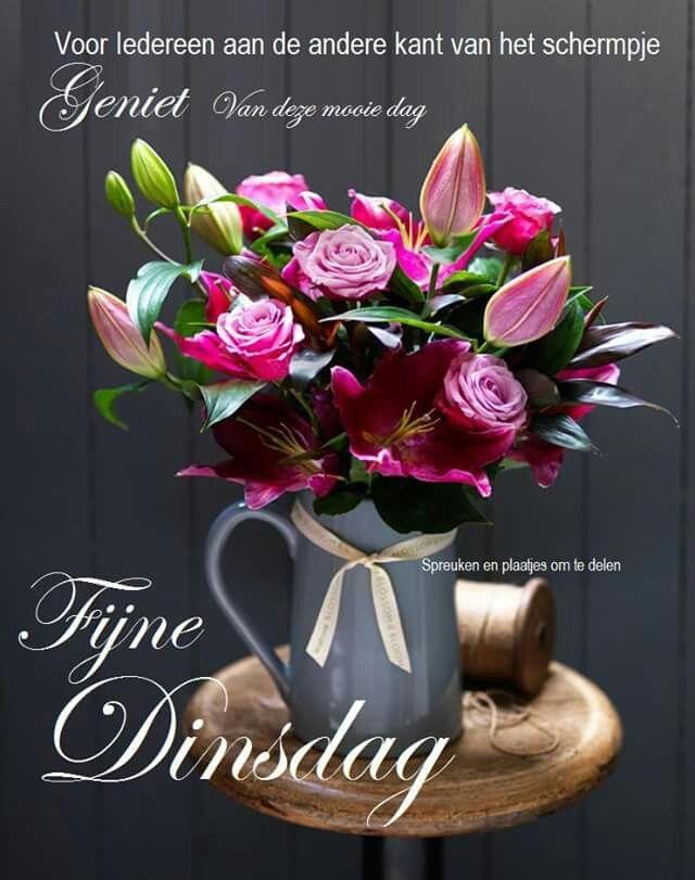 dinsdag spreuken Fijne dinsdag | Citaten en gezegden   Flowers, Beautiful flowers  dinsdag spreuken