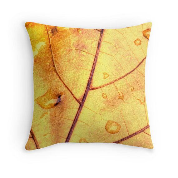 Photo Pillow Cover Anatomy Of A Leaf 16x16 18x18 20x20 Yellow Leaf