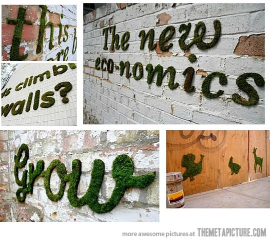 How to make moss graffiti ~ tres cool!!