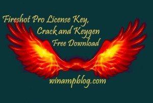 fireshot pro license key