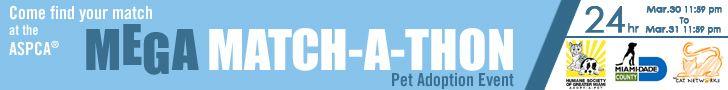 Mega Match-A-Thon ist ein Hunde/Katzen Adoptions-Event der Ende Maerz in Miami und einigen anderen Staedten in den USA gleichzeitig stattfindet. Mehr dazu auf unserer Seite...