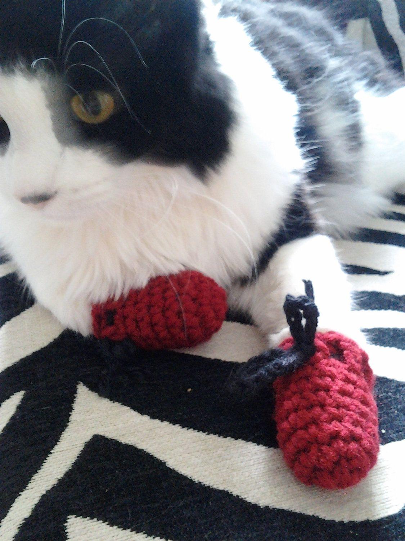 Crochet Kitten Mittens