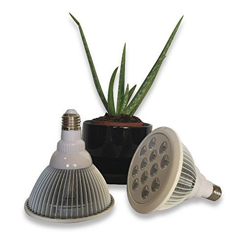 Led Grow Light Best 12W Grow Light For Indoor Plants 400 x 300