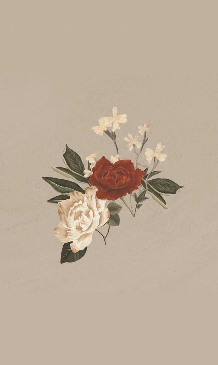 Khalid Song Quotes Wallpaper Kd Meu Rim Minino Shawn Mendes ♡ Pinterest