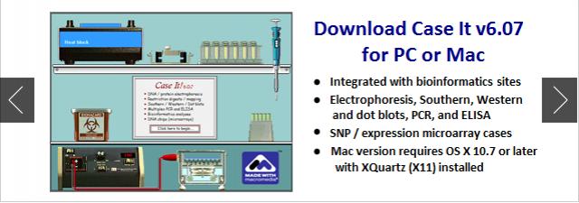 Gel Electrophoresis Virtual Lab Forensic Science