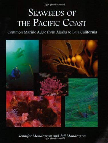 Seaweeds of the Pacific Coast: Common Marine Algae from Alaska to Baja California by Jennifer Mondragon