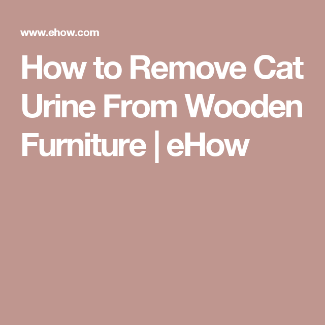 Remove Cat Urine From Wooden Furniture, How To Remove Cat Urine From Furniture