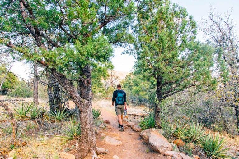 Flagstaff Arizona Where To Hike Eat Drink Arizona Travel Guide Snow Canyon State Park Arizona Travel