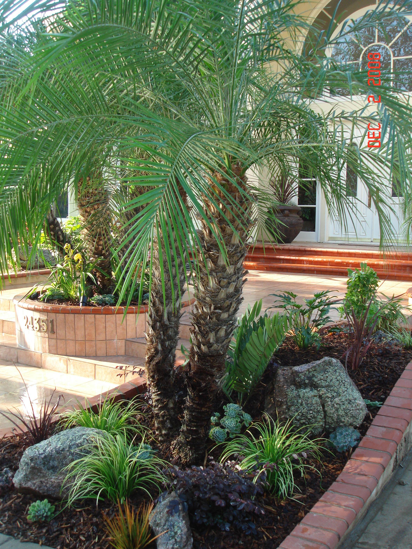 drought tolerant landscape design los angeles | bathroom design ...