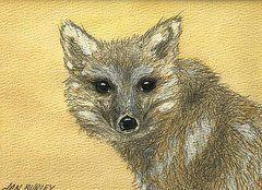 """Stealth"" original watercolor by Jan Burley (sold)"
