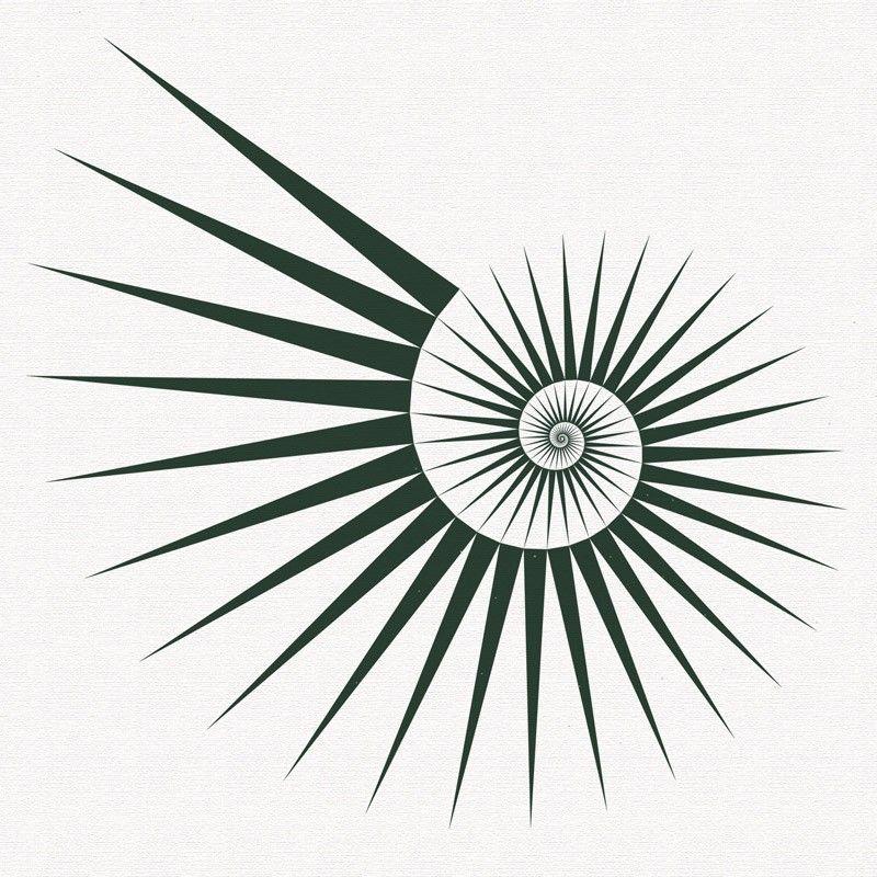 Fibonacci spirals - exploring the Fibonacci numbers in a series of illustrations : Studio Fredrik Skåtar