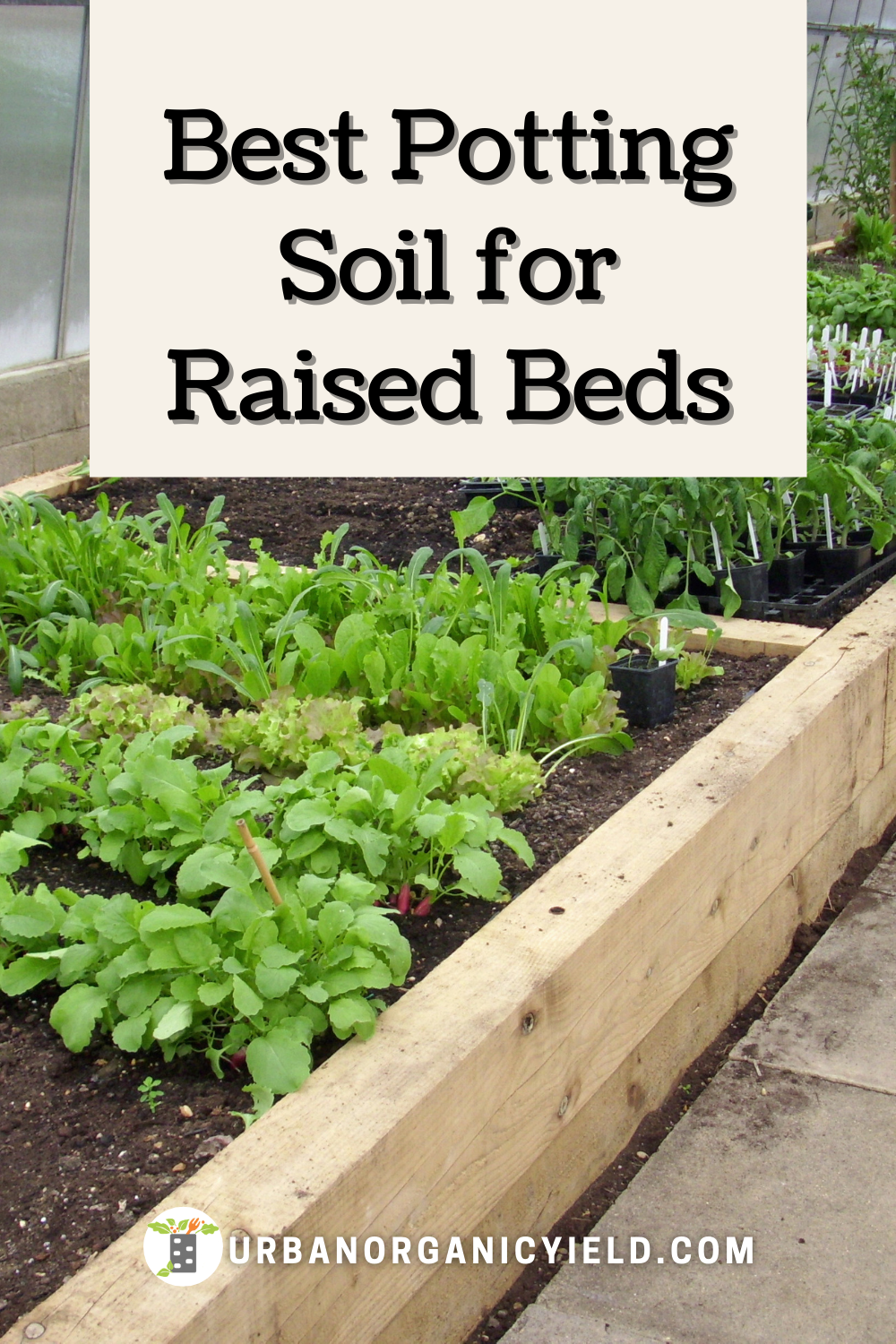 Why Do Gardeners Use Raised Beds
