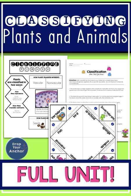 classifying plants and animals full unit 5th grade classifying plants science classroom. Black Bedroom Furniture Sets. Home Design Ideas
