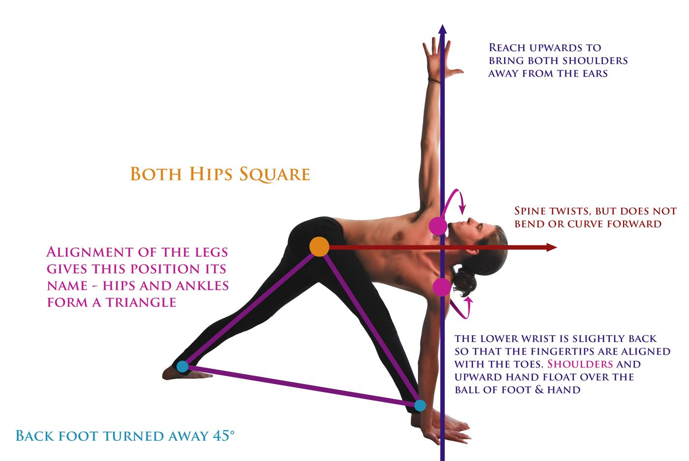 Parivritta Trikonasana Markup Ayurveda Yoga Yoga Magazine Acro Yoga
