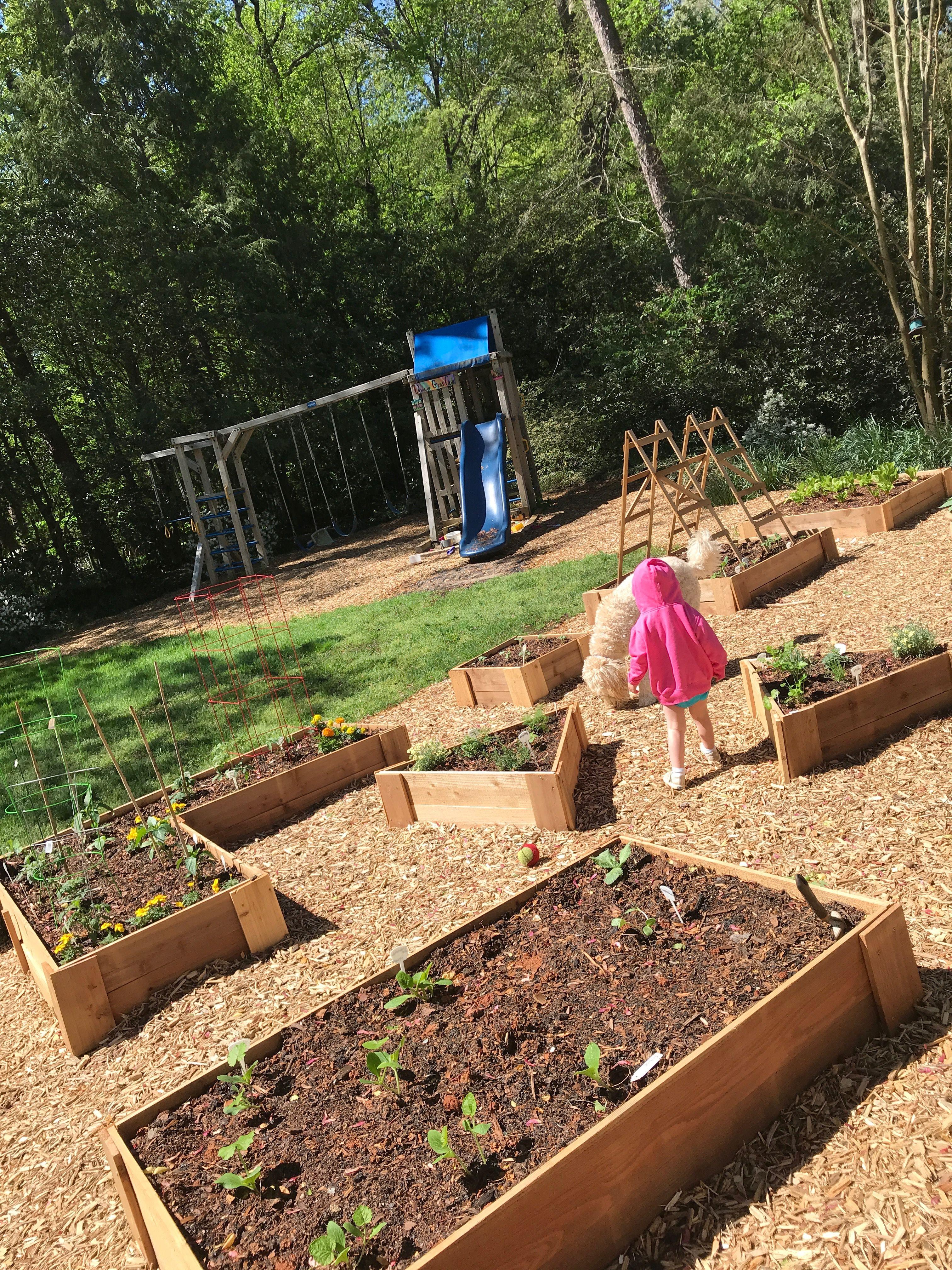 kitchen garden close to house and family compatible cedar raised beds mulch kitchen garden on kitchen garden id=44252