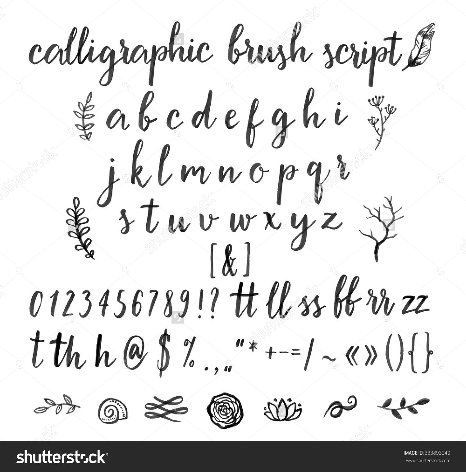 Calligraphic Vector Font With Numbers Ampersand And Symbols Rady