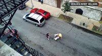 """""""O GRITO DO BICHO"""": Mulher é presa depois que seus pits atacam um home..."""