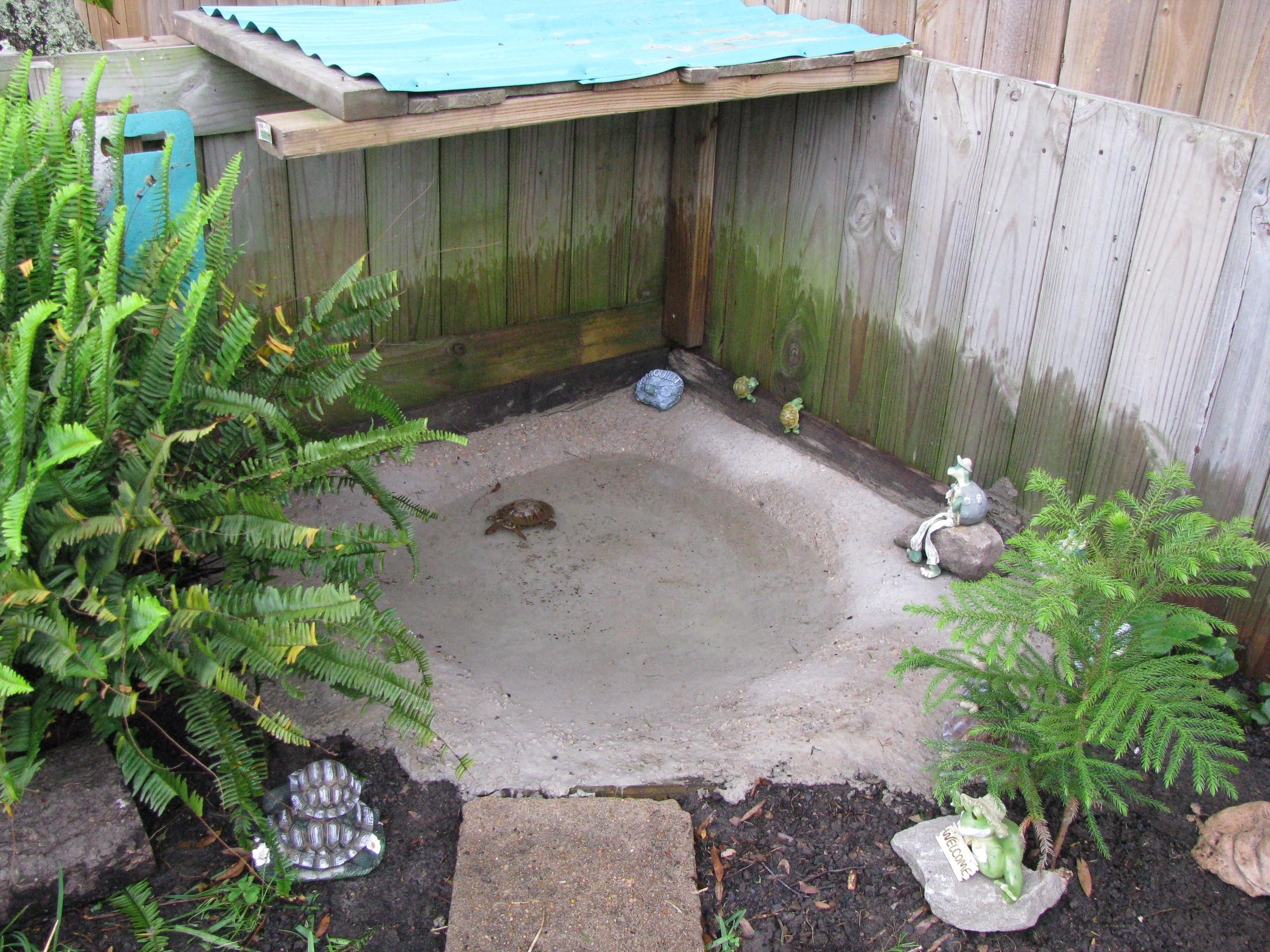cement pond inside the turtle pen i love turtles pinterest