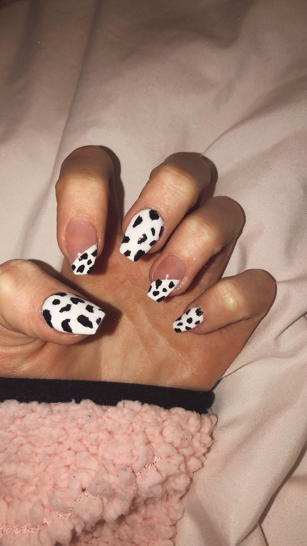 Cow Nails Nails In 2020 Cow Nails Nails Nail Accessories