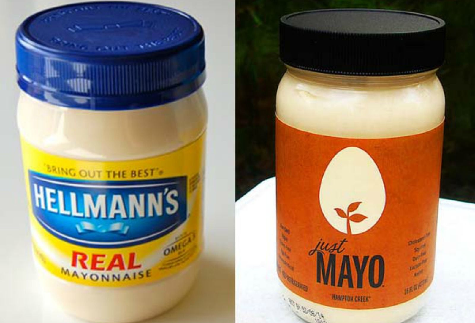 Wth Food Giant Sues Vegan Mayo Company Because Their Mayo Contains No Eggs With Images Vegan Mayo Mayo Brands Vegan
