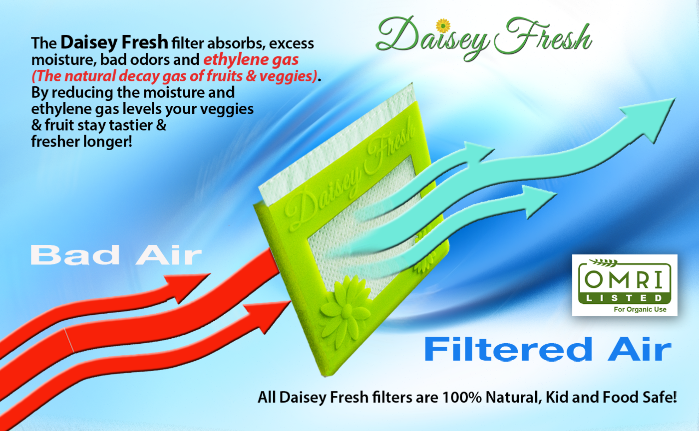 Bad air in. Good air out. The Daisey Fresh filter absorbs