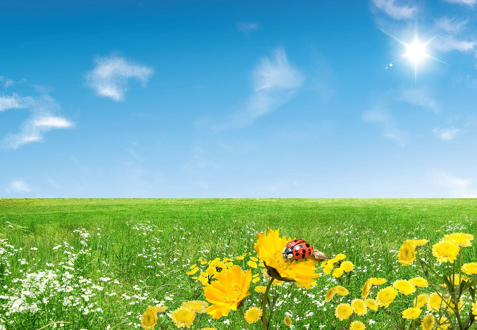 free spring desktop wallpaper spring 57 free wallpapers