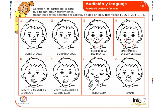 Pin De Maria Montes En Psicologia Praxias Lenguaje Oral Y