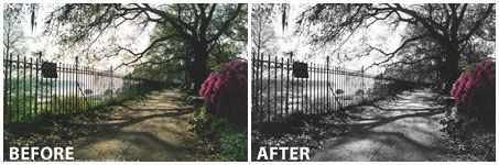 Photoshop Tutorial - Quick and Easy Spot Color in a Black & White Photo