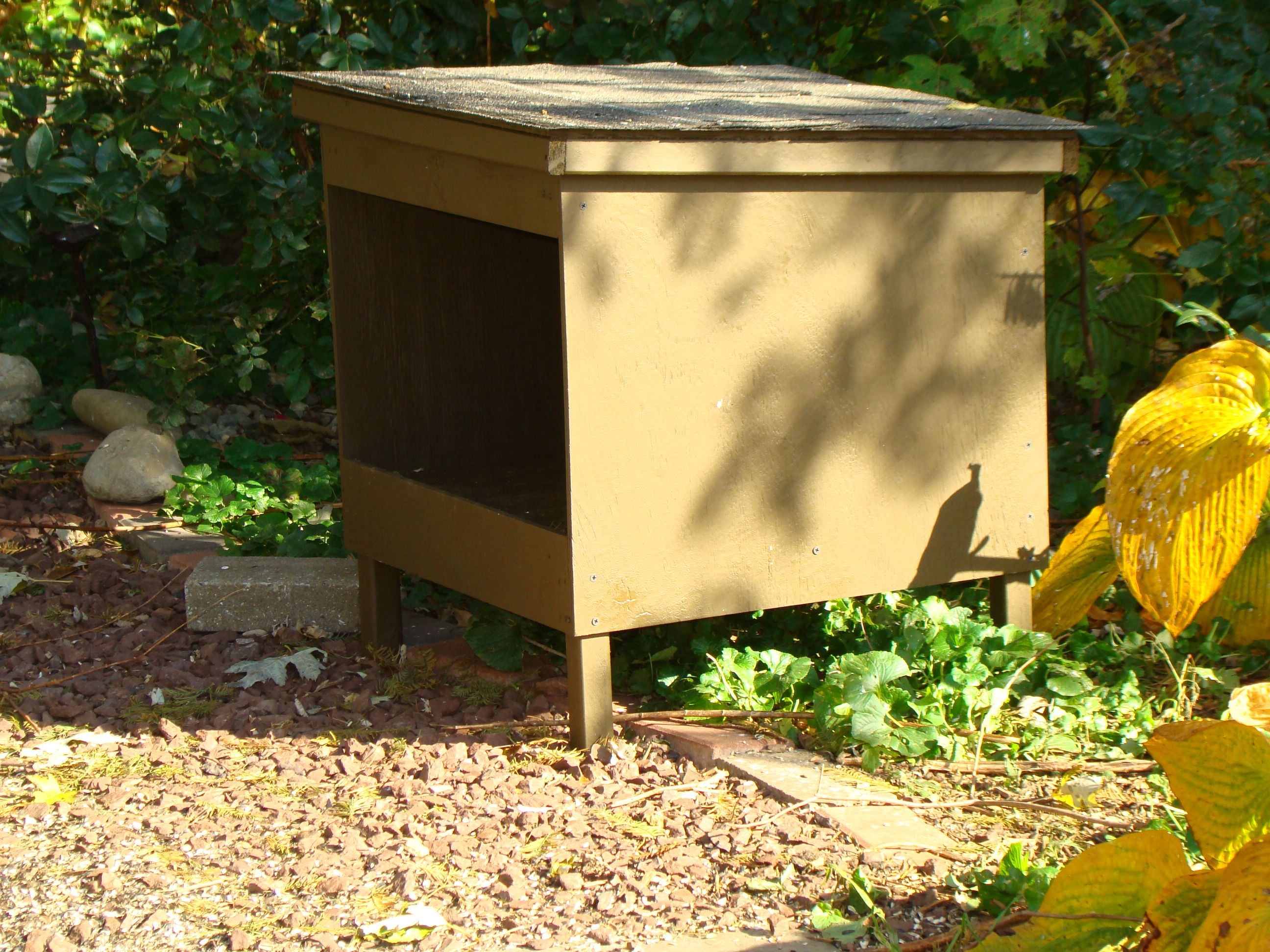 Feeding Station For Feral Cats Feral Cats Cat Food Station Feral Cat House