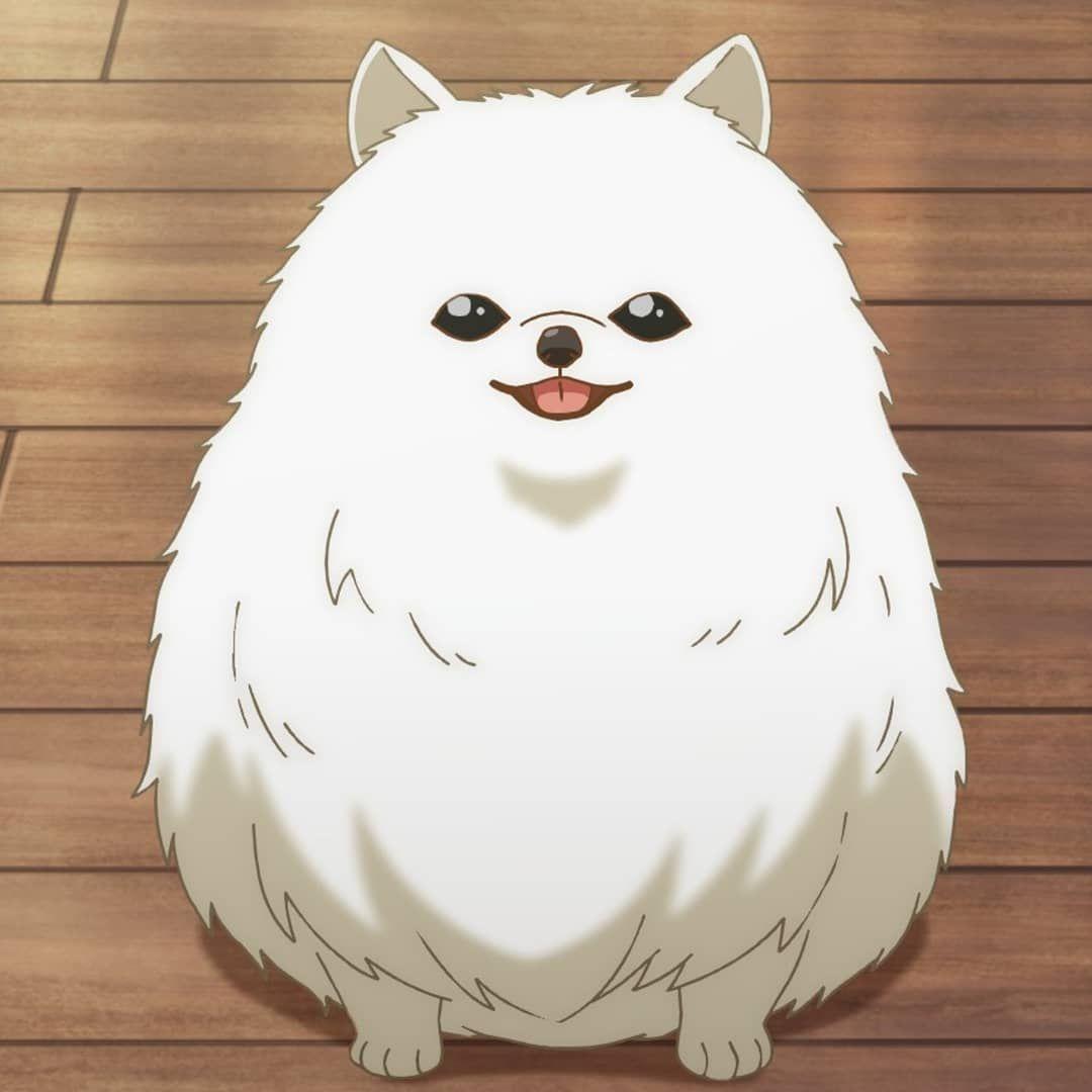 """fujoshi �� on Instagram: """"Tama is one kind of dog i want to adopt .��� . Anime : Given Mangaka : kizu natsuki Ep : 11 ( completed ) Manga : ongoing #given #anime…"""""""