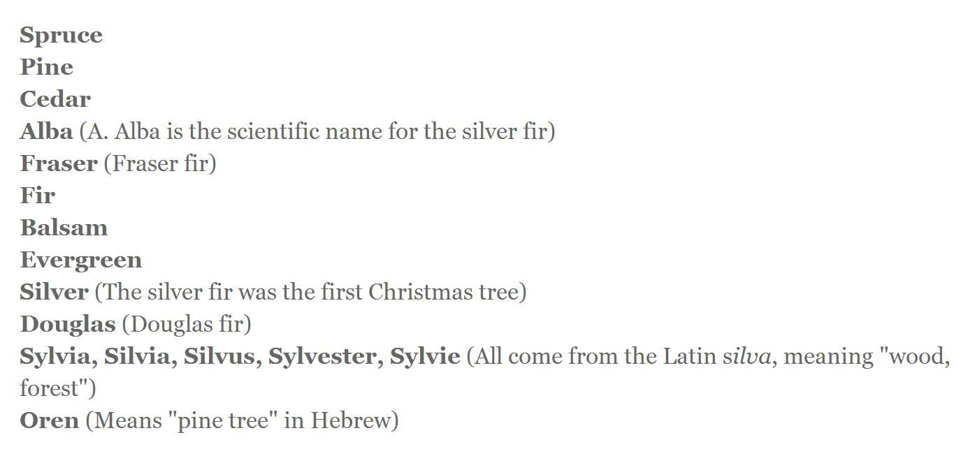 for names associated with holidays and christmas try thes