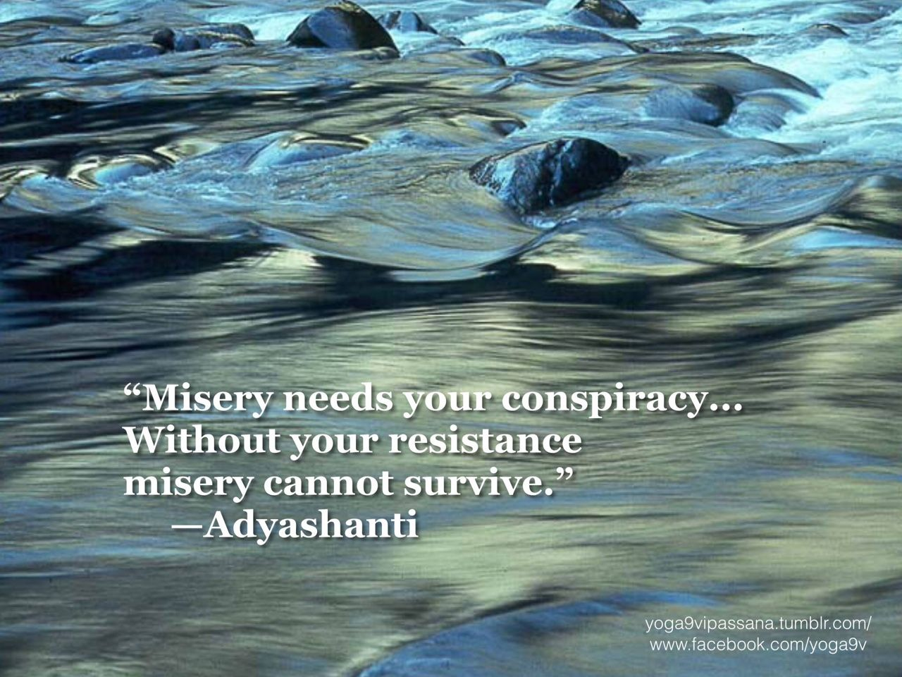 Adyashanti Quotes Wisdom Quotes Misery Needs Your Conspiracywithout Your
