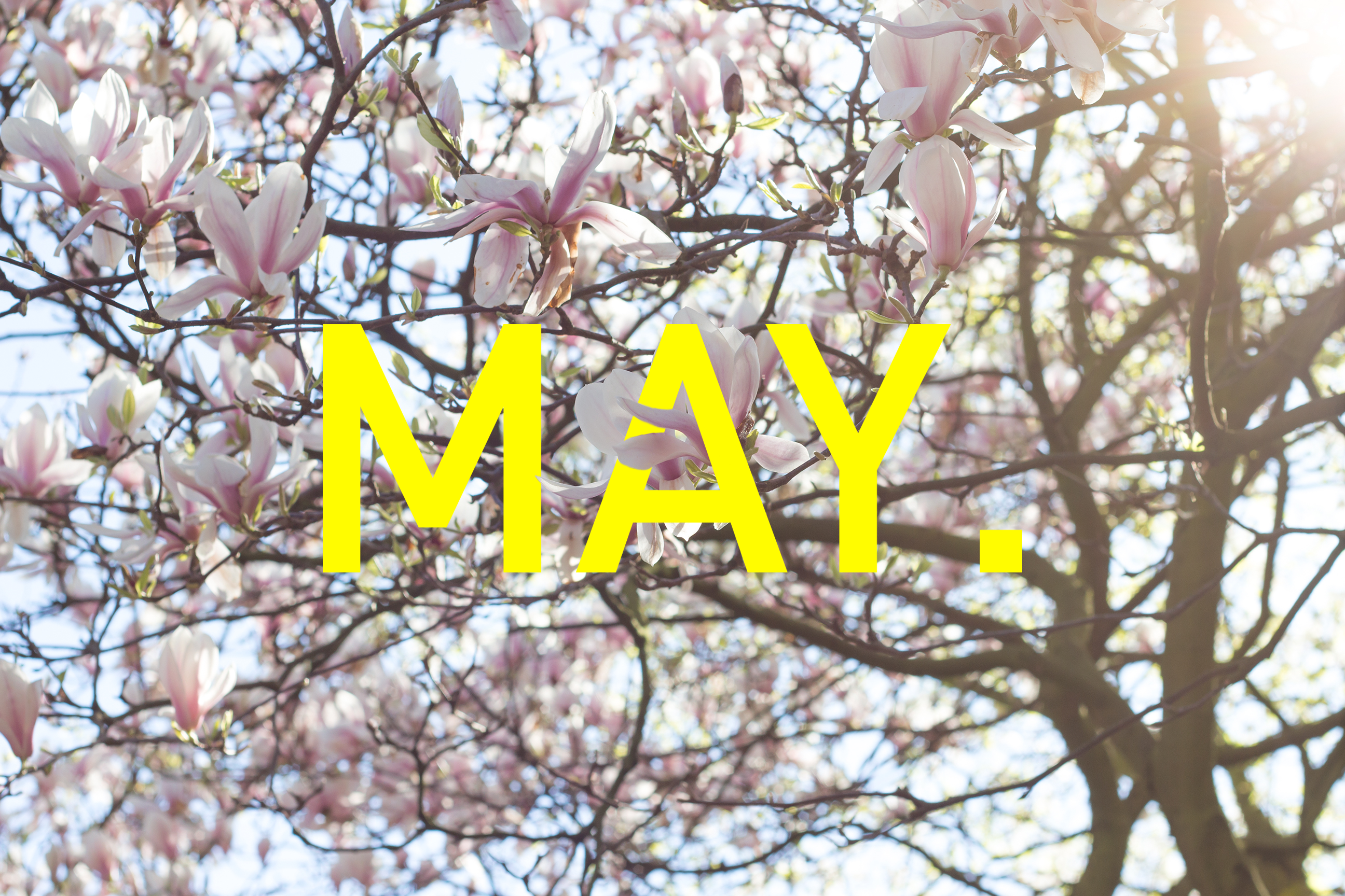 Wallpaper of the month, May. Free download for desktop, tablet & phone on the blog.