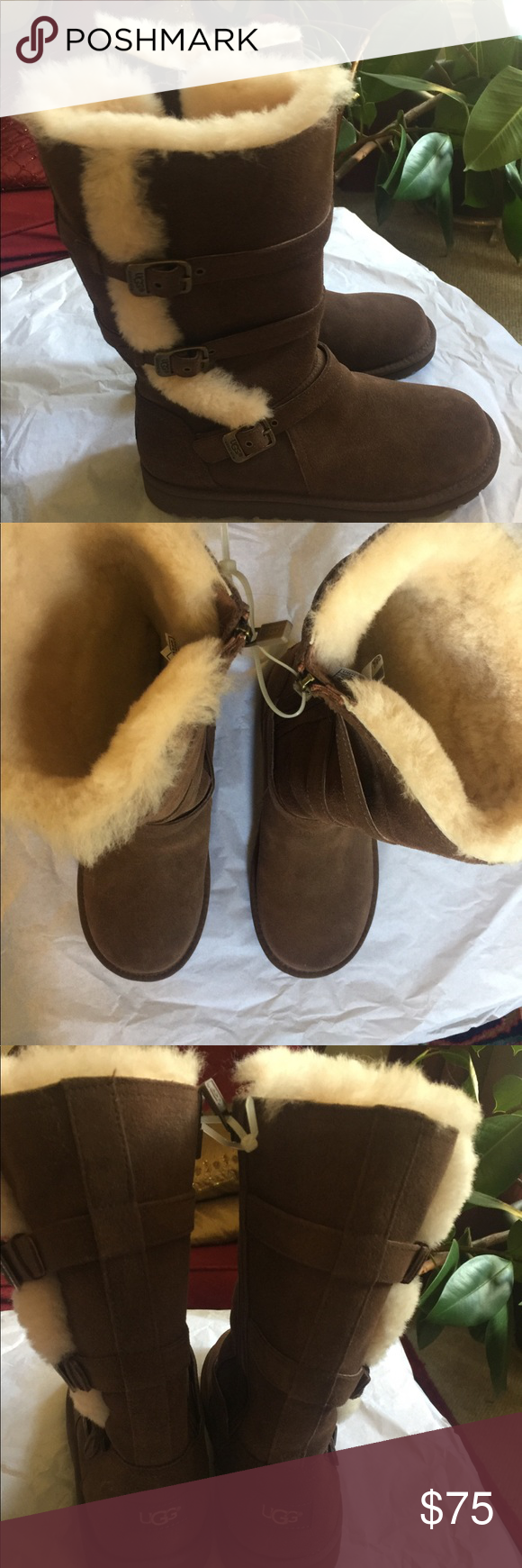 Sold No Longer Available Uggs Womens Uggs