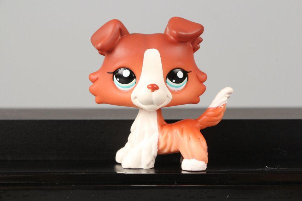 Bella collezione pet lps figure toy #1542 brown collie cane cucciolo blu occhi bel regalo dei capretti