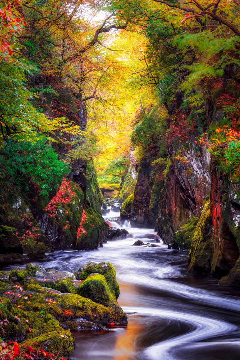 Photograph The Fairy Glen, BetwsY-Coed, Snowdonia, Wales by Joe Daniel Price on 500px