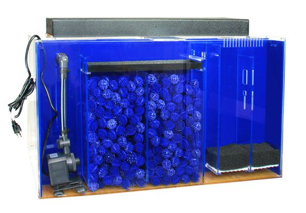 Hidden built in aquarium filter google search aquarium for Built in fish tank