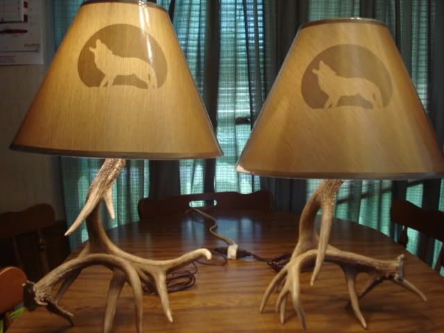 How to build an antler lamp antler pinterest antler lamp how to build an antler lamp aloadofball Image collections