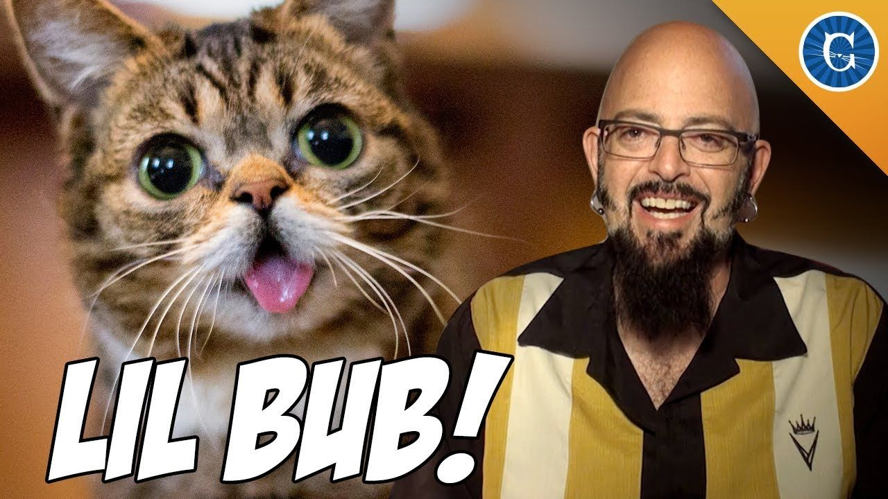 Cat Behaviorist Jackson Galaxy Talks With Li L Bub S Human Mike About How They Found Each Other Jackson Galaxy Bub The Cat Kitten Care