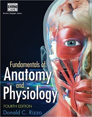 Fundamentals of Anatomy and Physiology 4th Edition Rizzo Solutions ...