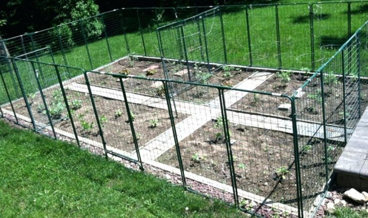 Veg Garden Fence Vegetable Garden Fence Design Best Design Build