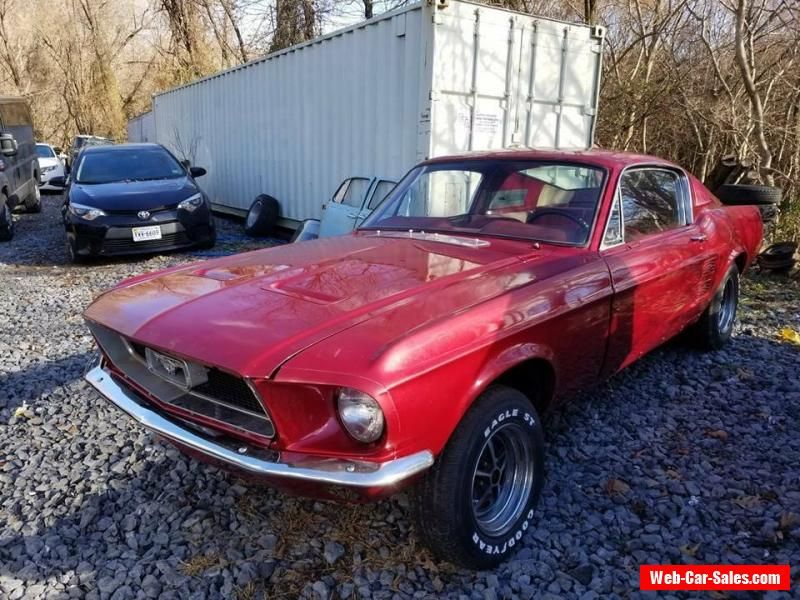 1967 Ford Mustang Fastback Ford Mustang Forsale Usa